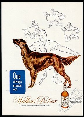 1945 Irish Setter beautiful dog art Walker's DeLuxe Bourbon Whiskey print ad