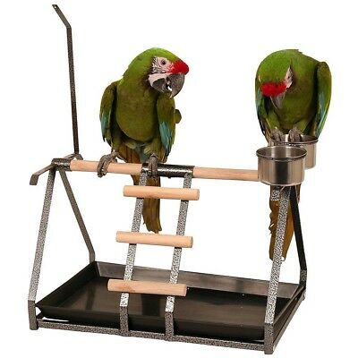 Tabletop Parrot Playstand with Toy Hanger and Feeders-Antique