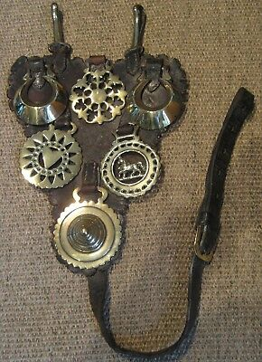 Antique Victorian Horse Brasses on Leather Harness Martingale - Stunning