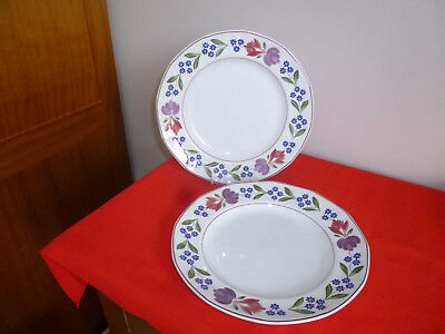 """2 X Adams Ironstone Old Colonial ~ 10 """"  Dinner Plates ~"""