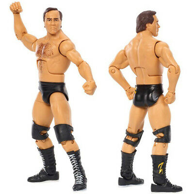 WWF WWE NWO Hall of Fame Larry Zbyszko Elite Wrestling Action Figure Kid Toys
