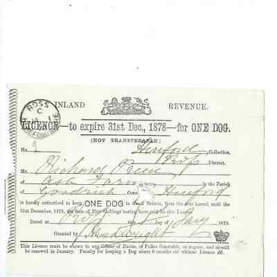 Herefordshire  1878  Licence for a dog at Ash Farm Goodrich