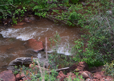 20 Acre Roaring Forks Creek Placer Gold Claim, Colorado Rockies