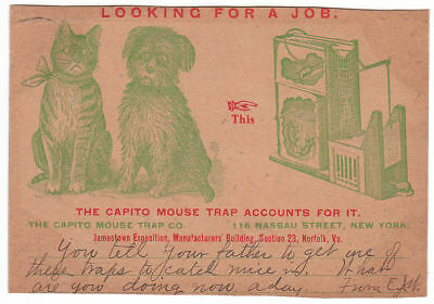 Early Jamestown Exposition Capito Mouse Trap Dog Cat Adv PC New York City NY Co