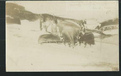 A Rare RP View Of Pilchard Fishing In Cornwall