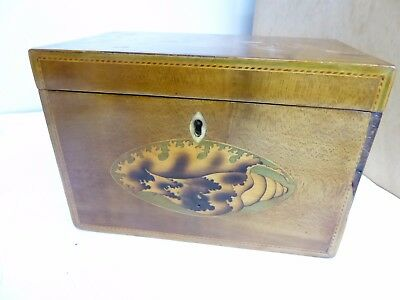Antique shell inlay tea caddy for parts or restoration