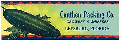 Original Crate Label Florida Vintage Strip Vegetable 1930S Cauthen Leesburg