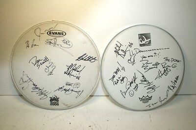Signed Woodstick 2005 And 2006 Drum Skins, Incl. Donn Bennett And Jeff Kathan
