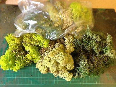 NEW Value trainmad Model Moss Scenery 3 bags HORNBY Rail War Slot Doll Tree