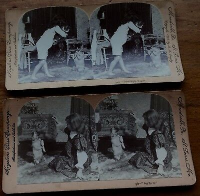 "2 Stereo View Cards Little Girls W/ Dogs & Cat ""beg For It"" & ""good Night Roger"""