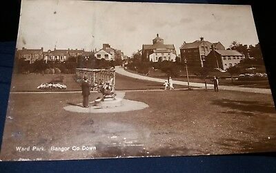 Ward Park Bangor  County Down Postcard