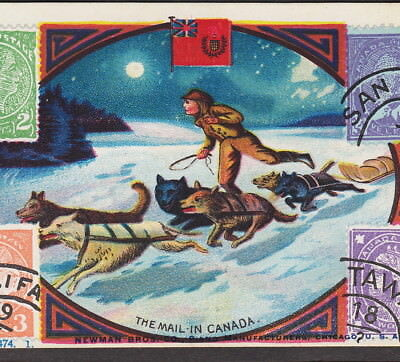 Klondike Dogsled Canada Mail Delivery Stamp Husky Newman Piano Advertising Card