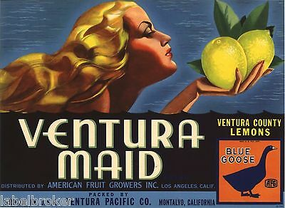 Genuine Ventura Maid Lemon Crate Label Art Deco C1930 Pinup Streamline Pin Up