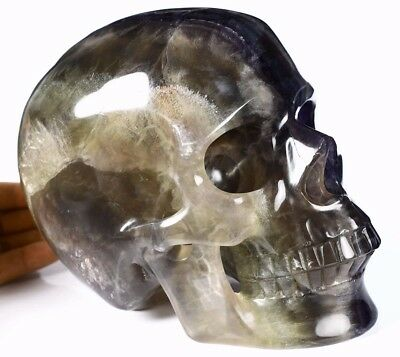 """Lifesized 8.0"""" FLUORITE Carved Crystal Skull, Realistic,Crystal Healing"""