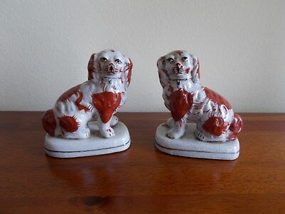 Pair Of Staffordshire Mantlepiece Dogs - King Charles Spaniels - Brown & White