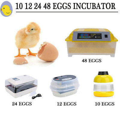 Fully Automatic Digital Egg Incubator 10/12/48 Egg Poultry Duck Hatcher