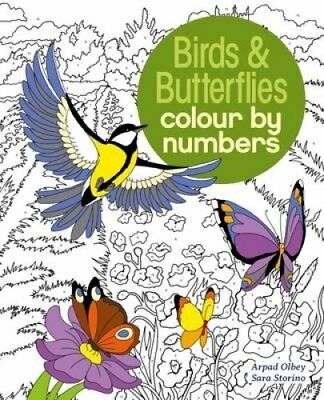 Colour by Numbers Birds & Butterflies by Sara Storino (Paperback, 2017)