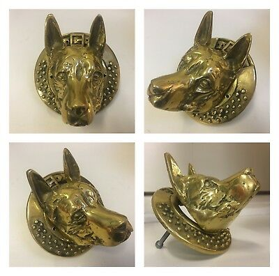 STUNNING OLD Solid Brass GERMAN SHEPHERD DOG with STUDDED COLLAR door knocker