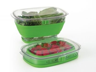 NEW Progressive Prepworks Collapsible Fruits Veggie Food Storage Containers 3.8L
