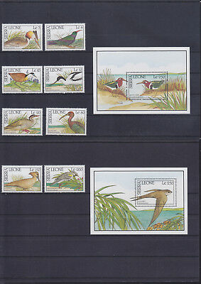 054966 Vögel Birds Sierra Leone 1455-62 + Block 129/30 ** MNH Year 1990