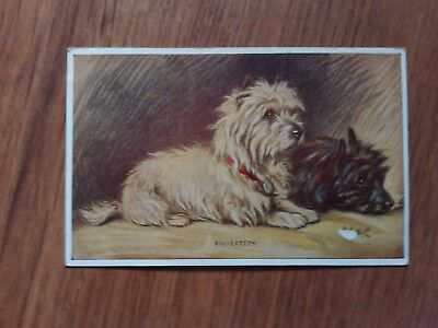 """Postcard Dogs """"Footsteps"""" """"Tailwaggers"""" No 3246 unposted."""