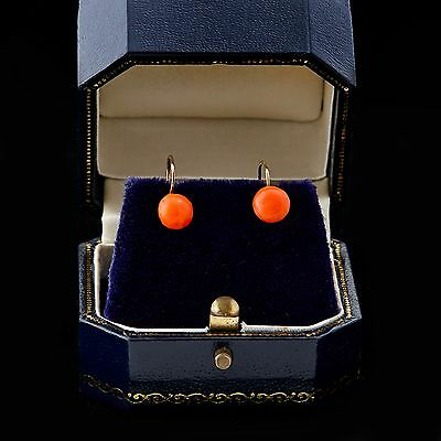 Antique Vintage Georgian 14k Rose Gold Carved 6.5 mm Salmon Coral Bead Earrings!