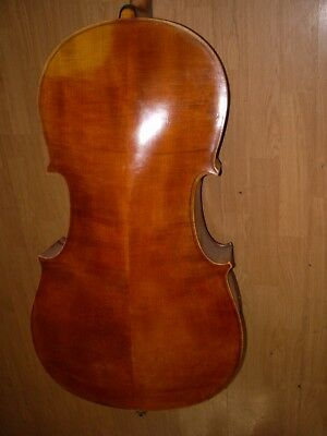 Cello      18- 19 Jahr