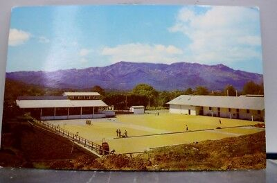 Costa Rica Sundrying Coffee Postcard Old Vintage Card View Standard Souvenir PC