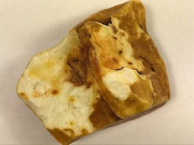 13GR Natural Royal White Baltic Amber Stone, EXC! RARE!