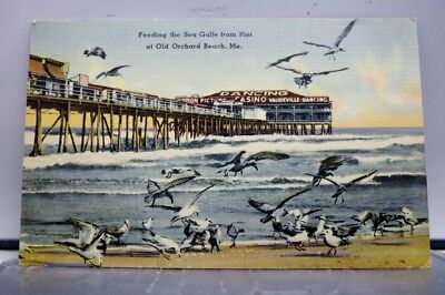 Maine ME Old Orchard Beach Pier Sea Gulls Postcard Old Vintage Card View Post PC