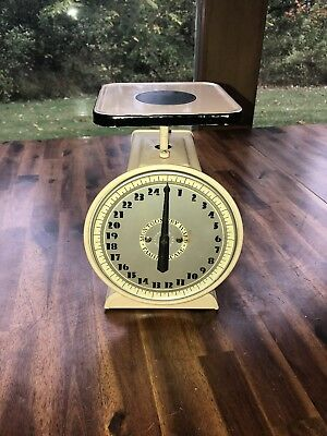 Vintage Montgomery Ward Family Scale