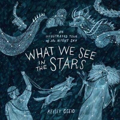 What We See in the Stars An Illustrated Tour of the Night Sky 9780752266510