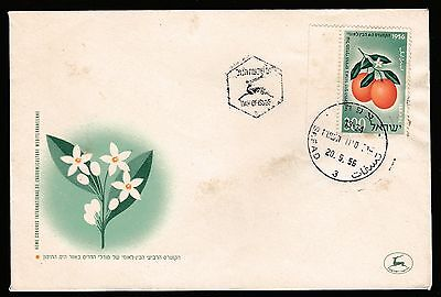 1956 ISRAEL 4th INTERNATIONAL CONGRESS OF CITRIS FRUIT GROWERS STAMP COVER #I10