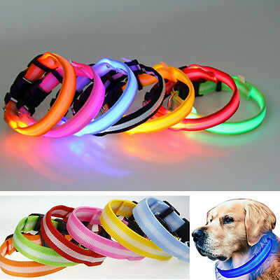 LED Pet Collar Pets Dog Walk Safety Flashing Light Leash glow in the dark party