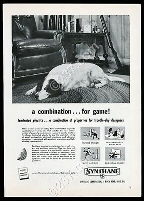 1956 English Setter photo Synthane terminal insulators vintage print ad