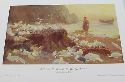 Antique PRINT TO FRAME. An Old World Wanderer. Briton Riviere RA. Birds and sea