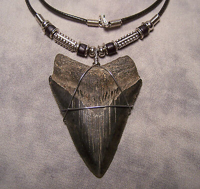 """Huge 2 3/4"""" Megalodon Shark Tooth Teeth Necklace Fossil Jaw Megladon Fishing"""