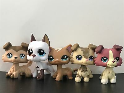 5lot Hasbro Littlest Pet Shop LPS #893#577#1262 Figure Collie Dogs Puppy Toys