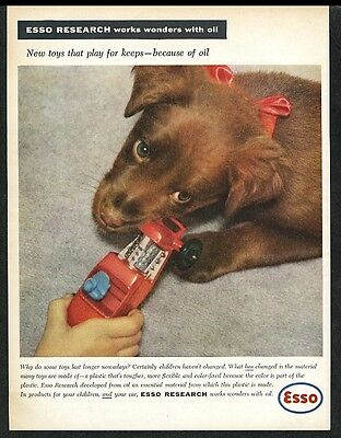 1958 Irish Setter puppy color photo Esso oil gas vintage print ad