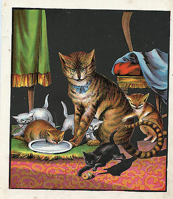 Kittens Drinking Milk Mother Cat Feline Pets Animals Antique Lithograph Print