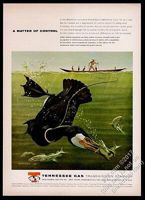 1961 cormorant fishing art Tennessee Gas vintage print ad