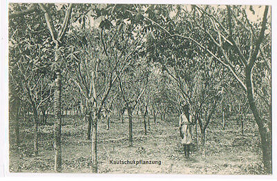 DOA s/w POSTKARTE Kautschuk-Pflanzung = GERMAN EAST AFRICA PICTURE POSTCARD
