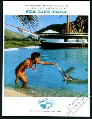 1964 Sea Life Park Hawaii bikini woman feeding dolphin photo vintage print ad