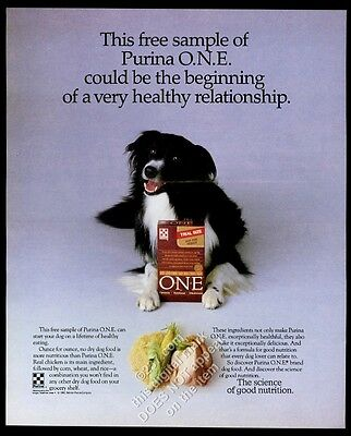 1990 Border Collie photo Purina One dog food vintage print ad