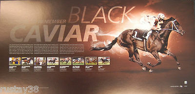 Black Caviar A Year To Remember Limited Edition Print   Luke Nolen Peter Moody