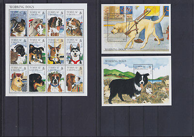 055806 Hunde Dogs Turks & Caicos Islands 1332-43 + Block 163/64 ** MNH Year 1996