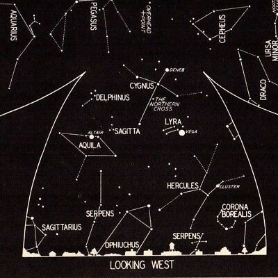 1942 October Sky STAR & CONSTELLATION Map ASTRONOMY Print Astrology Signs 4321