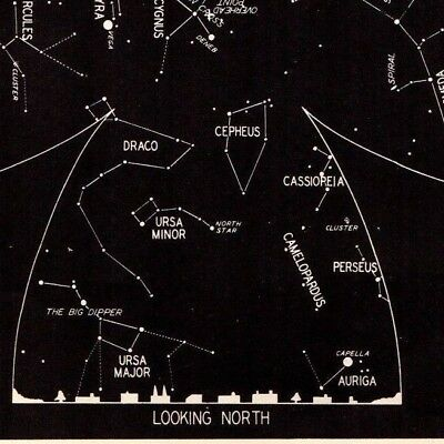1942 September Sky STAR & CONSTELLATION Map ASTRONOMY Print Astrology Signs 4322