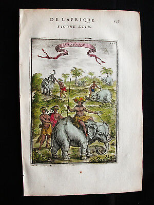 1683 MALLET - Original rare PRINT of the AFRICAN ELEPHANTS, AFRICA, AFRIQUE