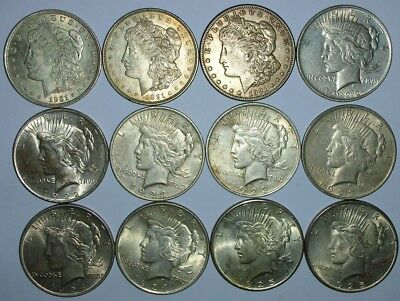 12 Silver Dollars (2) 1921, (1) 1921-S, (2) 1922, (3) 1923, (2) 1924, (2) 1925